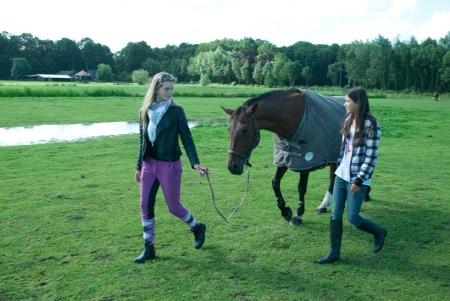 © Paarden verzorgen en paardrijden ©