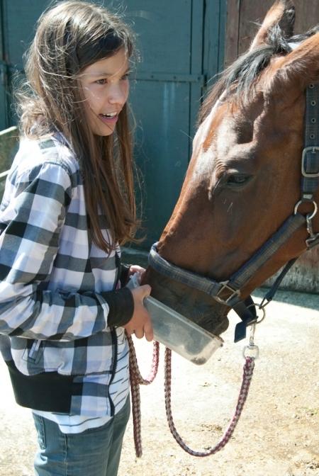 Paarden verzorgen en paardrijden