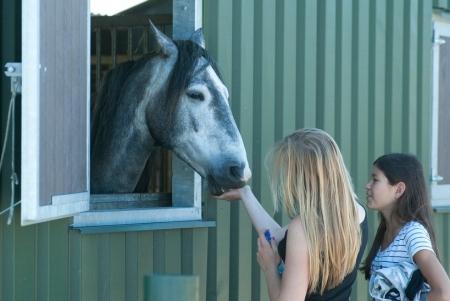 © Nog even bij de andere paarden kijken ©