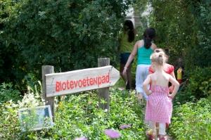 Griftpark Utrecht, veel vogels, dieren en bloemen